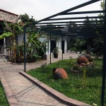 Giannikos Hotel, Halkidiki Greece